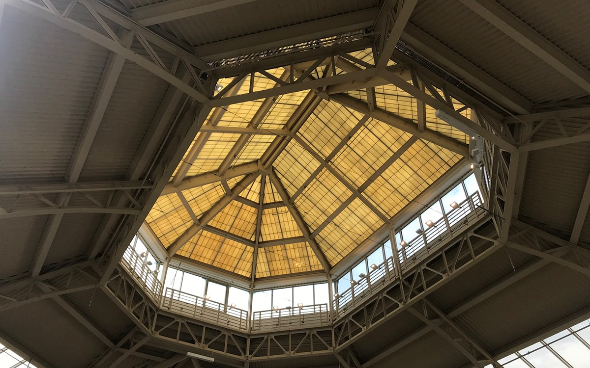 Fiberglass skylight turning brown and yellowing